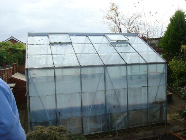 Gorgeous New Greenhouse! (3/3)