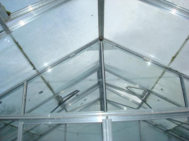 Gorgeous New Greenhouse! (2/3)