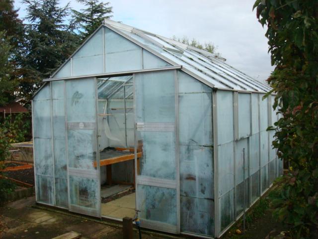 Gorgeous New Greenhouse! (1/3)
