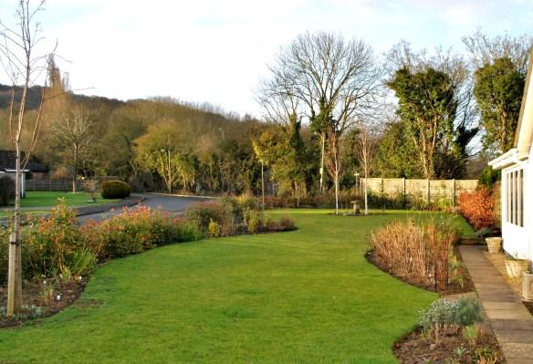 Front Garden in February