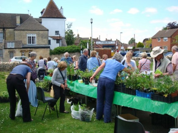 Busy Plant Sale!