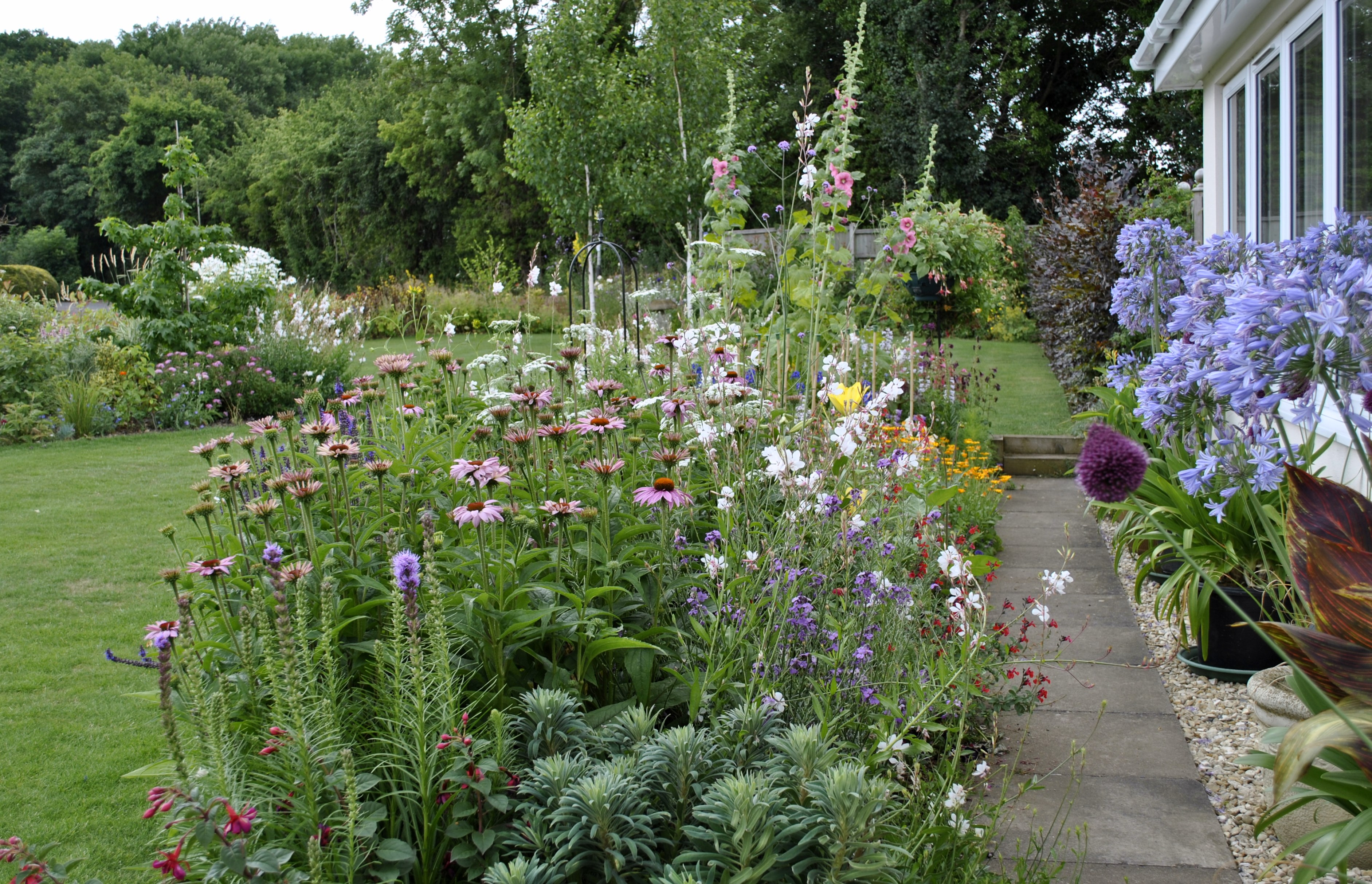 My Garden This Week David 39 S Garden Diary