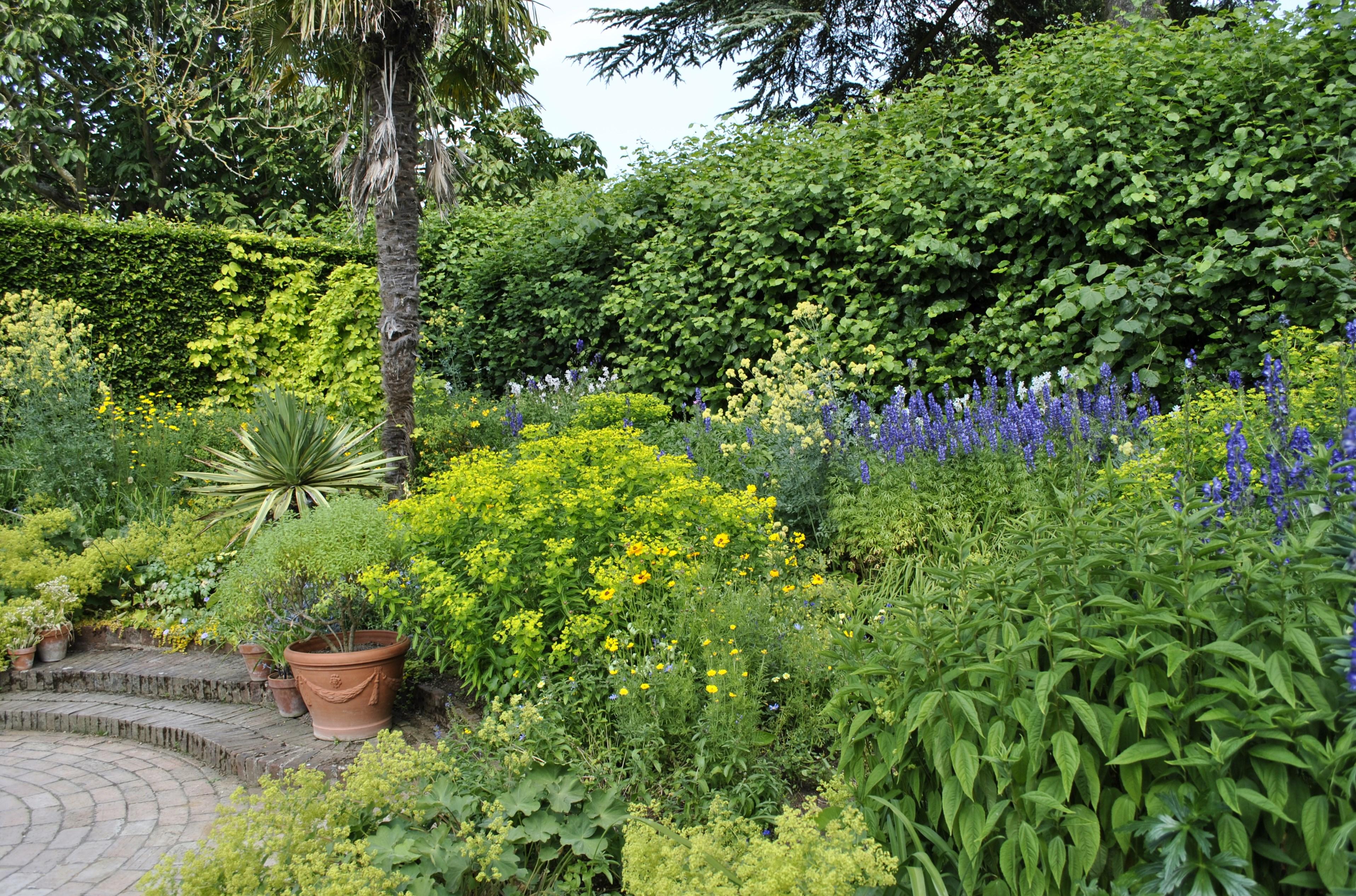 Return To Hidcote Manor David S Garden Diary