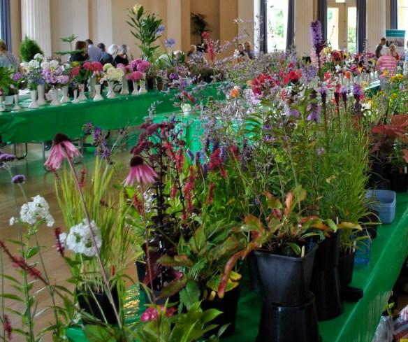 Harrels Hardy Plants Stall